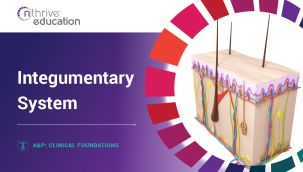 Clinical Foundations: A&P - Integumentary System