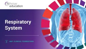 Clinical Foundations: A&P - Respiratory System
