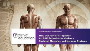 Webinar: Coding - How Our Parts Fit Together: An A&P Refresher for Coders - Skeletal, Muscular, and Nervous Systems